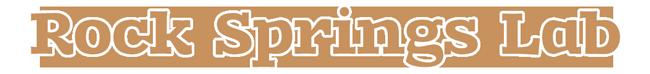rock-springs-logo-web